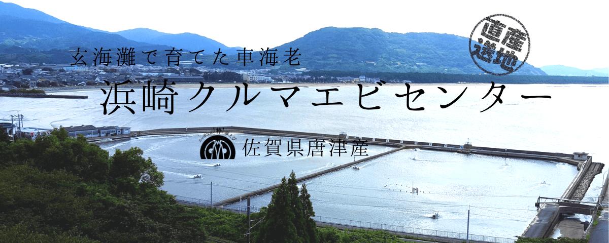 浜崎クルマエビセンターオンラインショップ