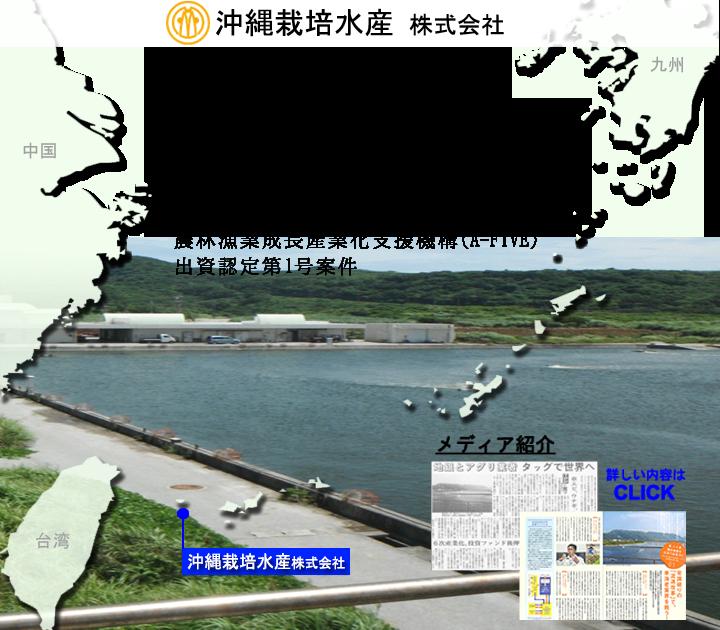 沖縄栽培水産株式会社